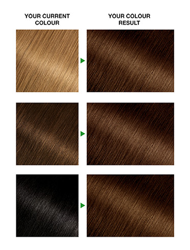 GoldenBrown43Result372x488
