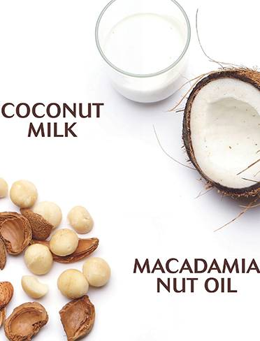 Coconut-Milk-Ingredients